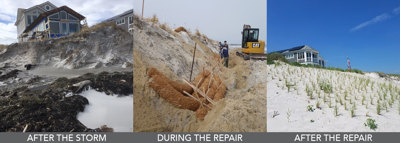 Gloucester Coastal Dunes Repair